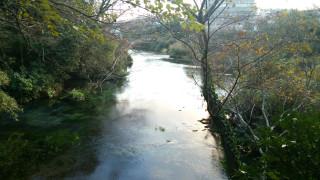 Kakitagawa